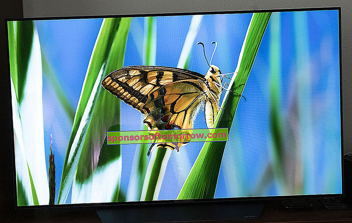 we have tested LG OLED B8 another 4K image