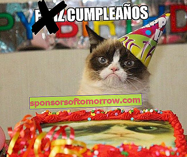 Grumpy Cat meme birthday birthday Whatsapp