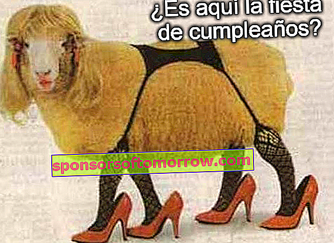 Sexy sheep birthday memes whatsapp facebook