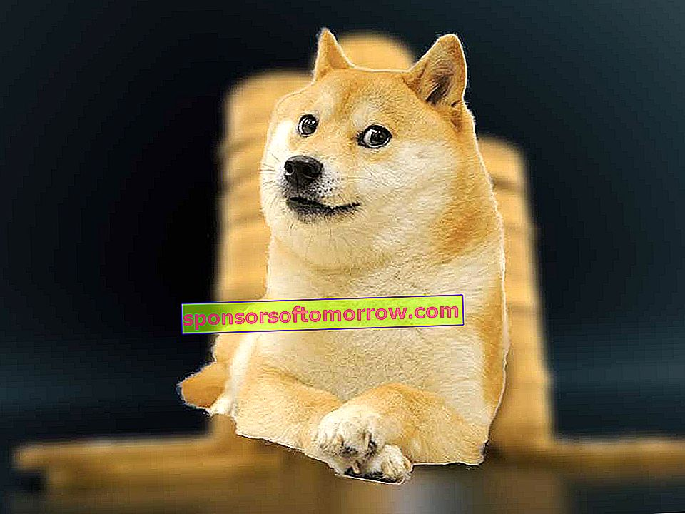 Dogecoin, the cryptocurrency that wants to rival Bitcoin
