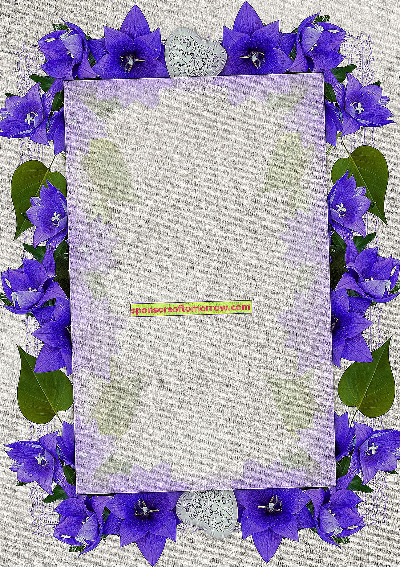 wedding invitation flowers with frame
