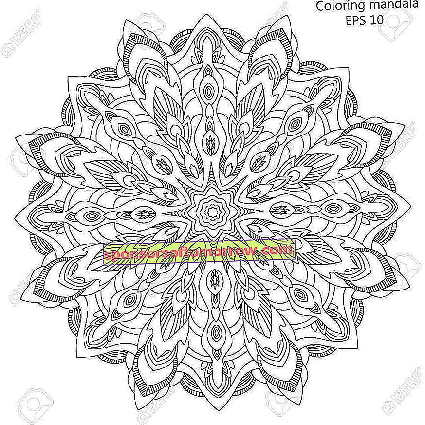 59977508-the-mandala-coloring-page-for-the-vector-illustration-of-an-adult-