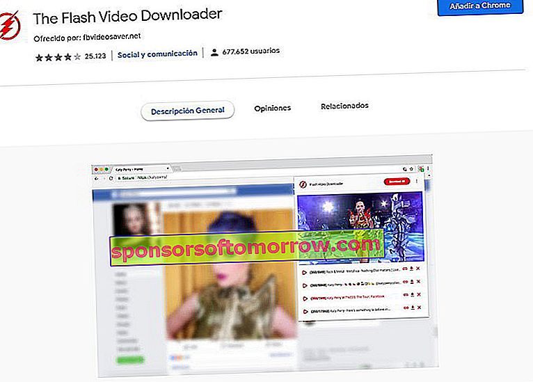 Der Flash Video Downloader