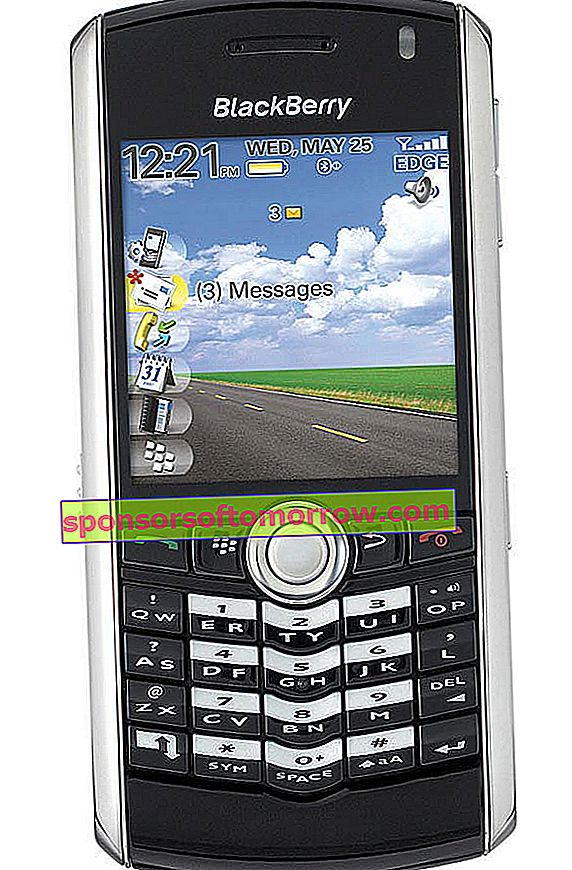 Blackberry-Pearl-8110-06