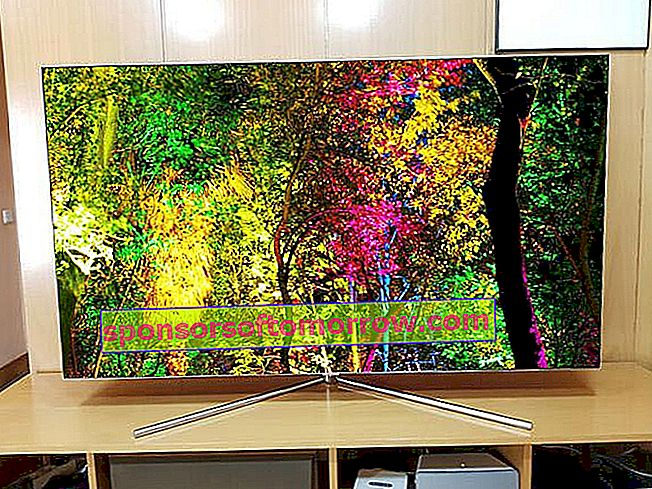 Samsung-QLED-Q7F-65 forest of colors